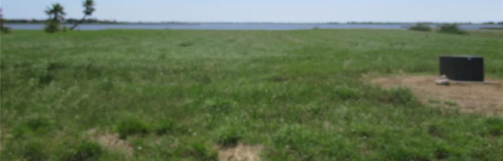 Active | 000 Windswept Drive Port Lavaca, Texas 77979 0