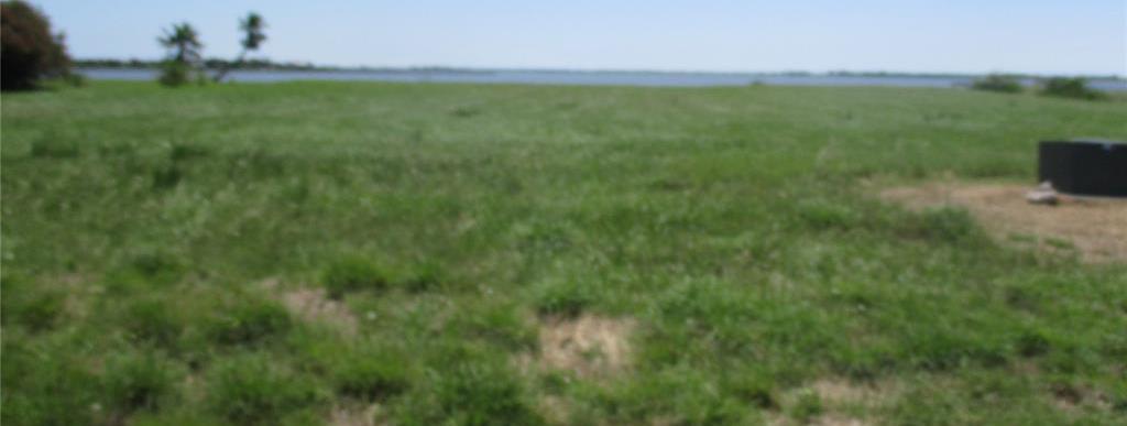 Active | 000 Windswept Drive Port Lavaca, Texas 77979 4