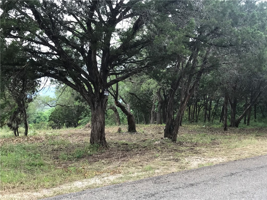 Sold Property | 18409 E Lakeview Drive Jonestown, TX 78645 3