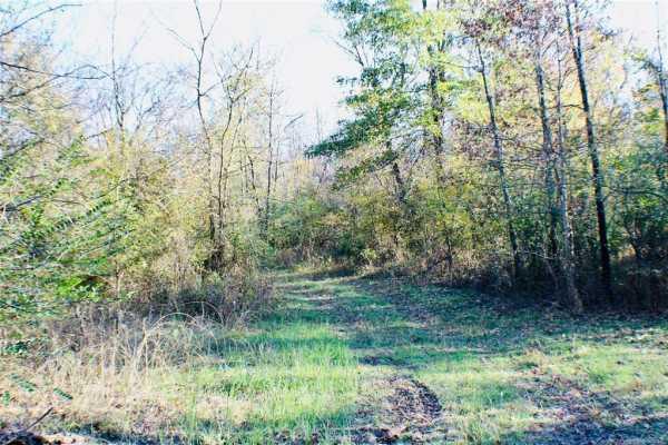 Active   22155 S Wildwood Lane Claremore, Oklahoma 74019 13