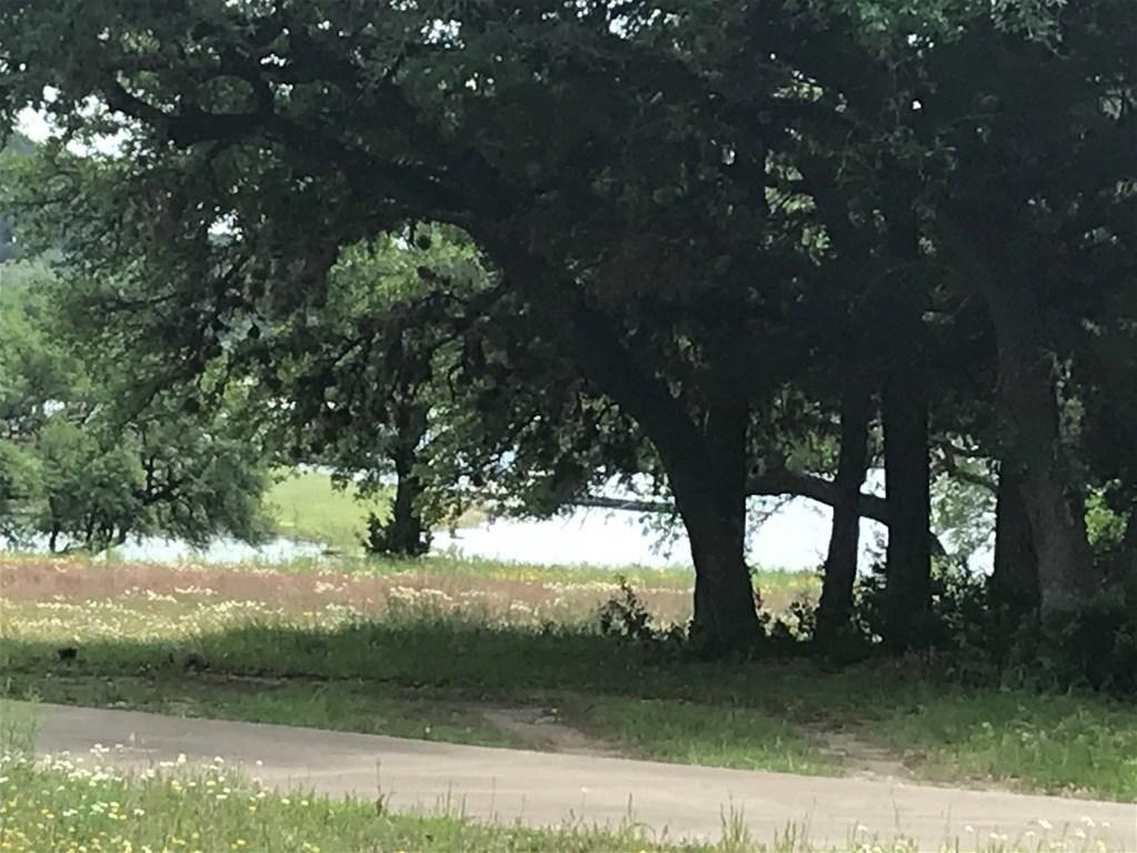 Withdrawn | 6719 Bar K Ranch Road Lago Vista, TX 78645 1