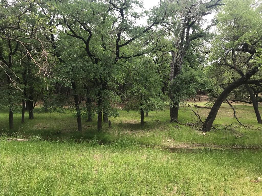 Withdrawn | 6719 Bar K Ranch Road Lago Vista, TX 78645 5