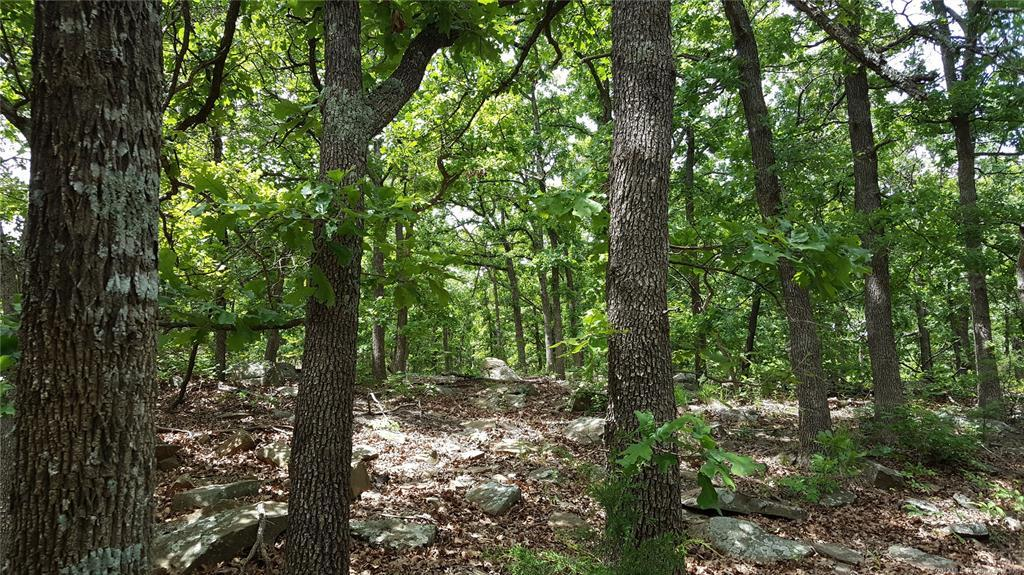 Off Market |  S Campbell Creek Road Sand Springs, Oklahoma 74063 0