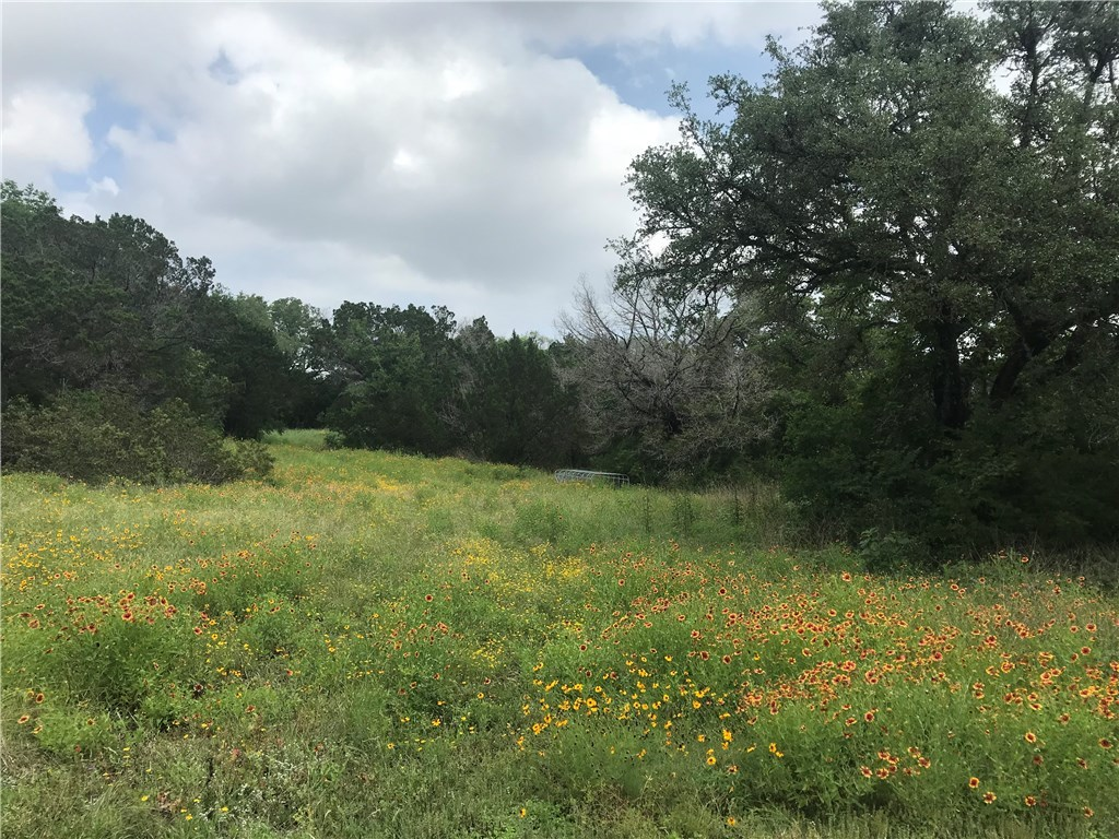 Sold Property | 17914 & 17916 Lafayette Park Road Jonestown, TX 78645 0