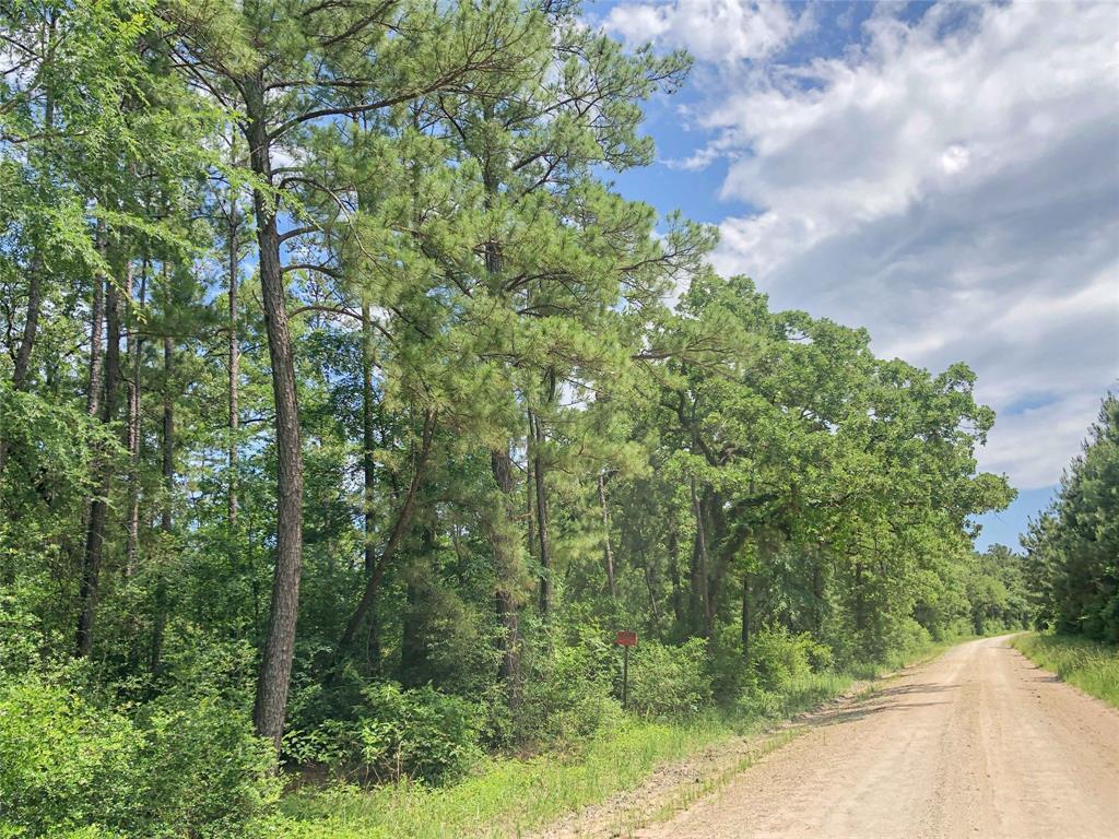 Active | 0 Lost Indian Camp  Road Huntsville, TX 77320 10