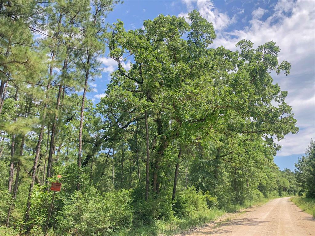 Active | 0 Lost Indian Camp  Road Huntsville, TX 77320 11