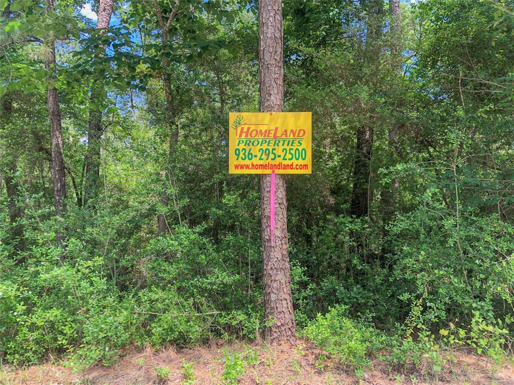 Active | 0 Lost Indian Camp  Road Huntsville, TX 77320 19