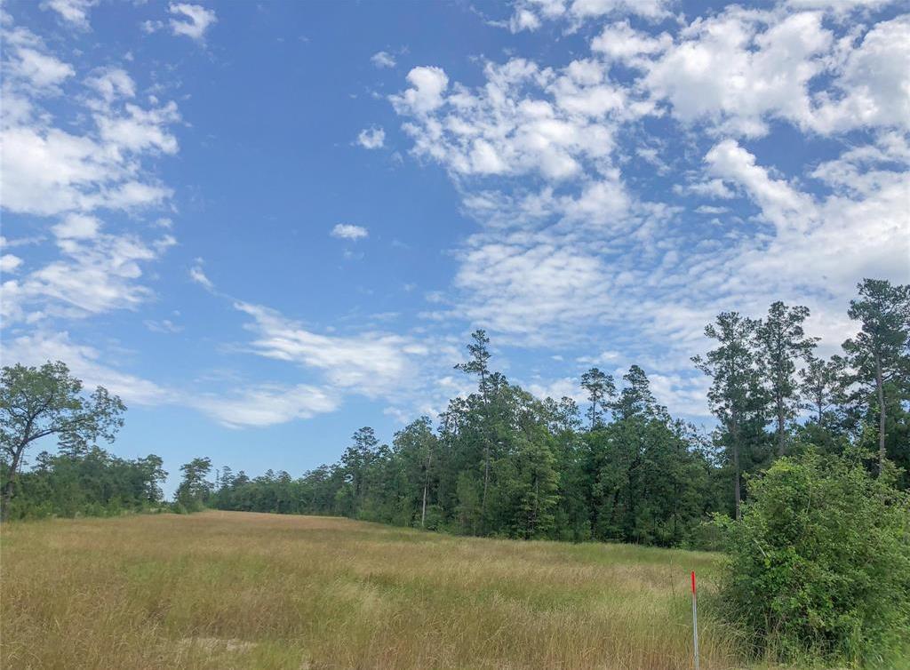 Active | 0 Lost Indian Camp  Road Huntsville, TX 77320 6