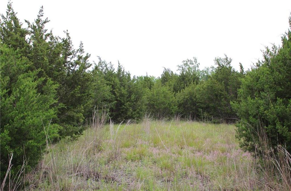 Sold Property | TBD County Rd 253  Georgetown, TX 78633 3