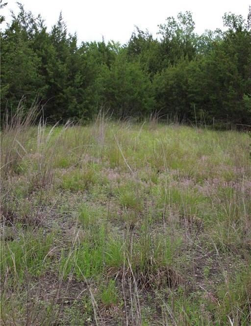 Sold Property | TBD County Rd 253  Georgetown, TX 78633 5