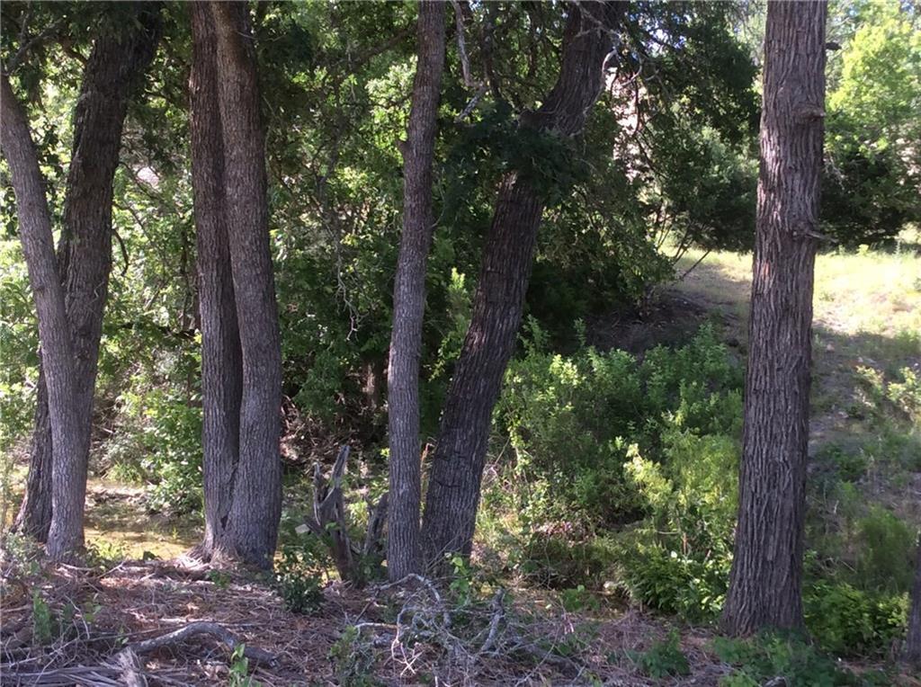 Sold Property | 429 Saddle Ridge Drive Burnet, TX 78605 27
