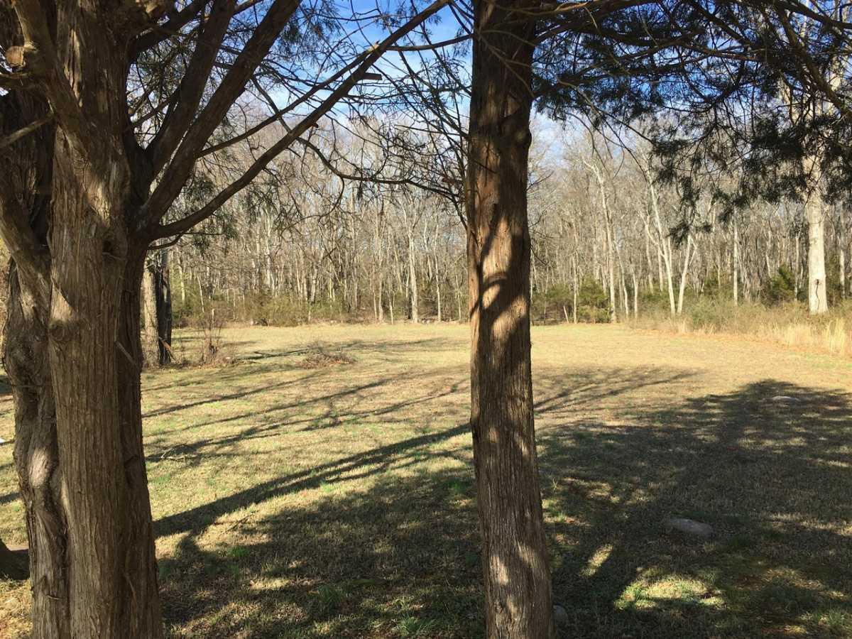 Sold Property | 7420 Joe Rowlin Road Christiana, TN 37037 10