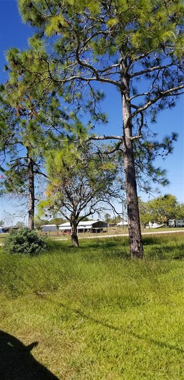 Off Market | 65 Tupelo Street Palacios, Texas 77465 7