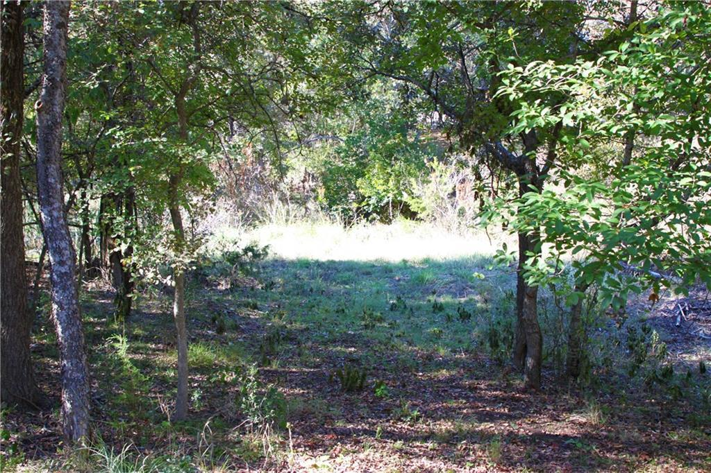 Sold Property | 311 Ranch Road 1869  Liberty Hill, TX 78642 37