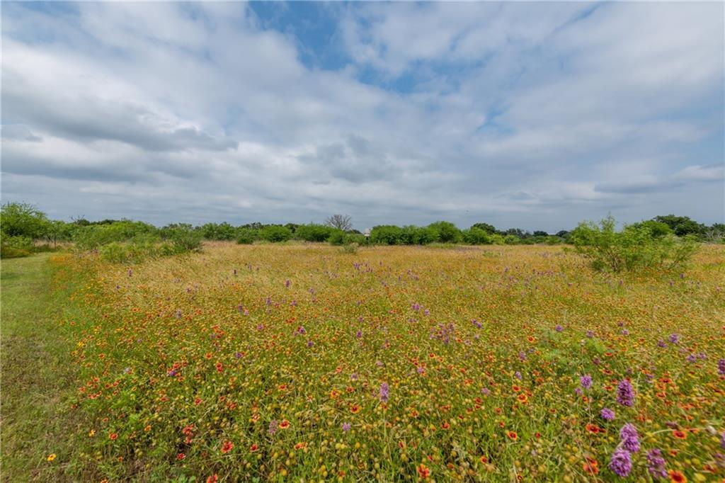 acreage, wildlife, spicewood, no hoa | 0 N Paleface Ranch Road Spicewood, TX 78669 4