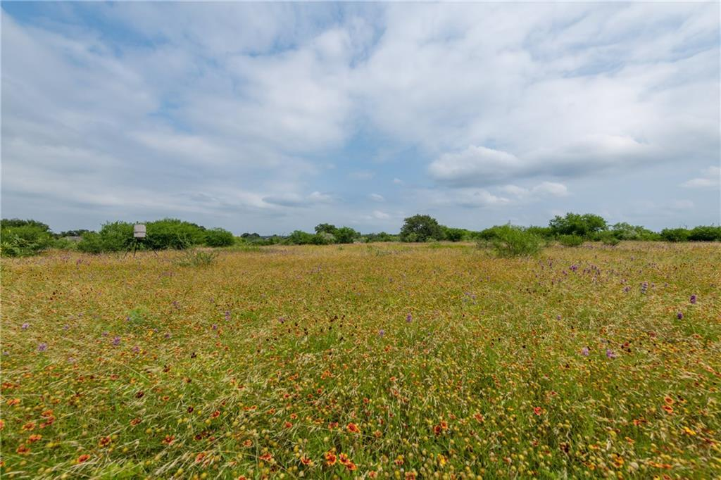 acreage, wildlife, spicewood, no hoa | 0 N Paleface Ranch Road Spicewood, TX 78669 5
