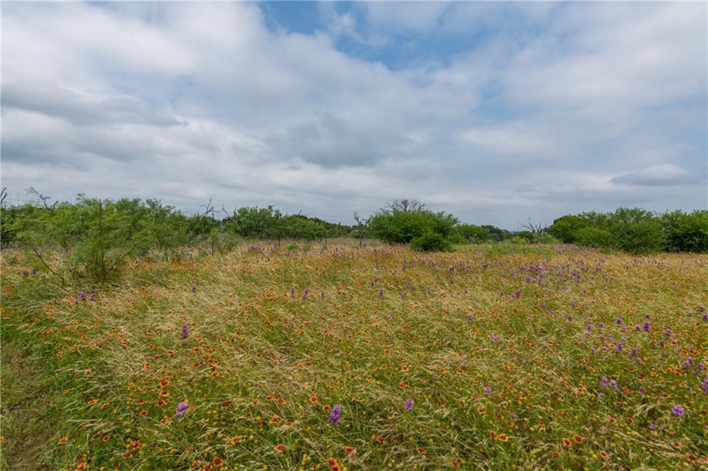 acreage, wildlife, spicewood, no hoa | 0 N Paleface Ranch Road Spicewood, TX 78669 6