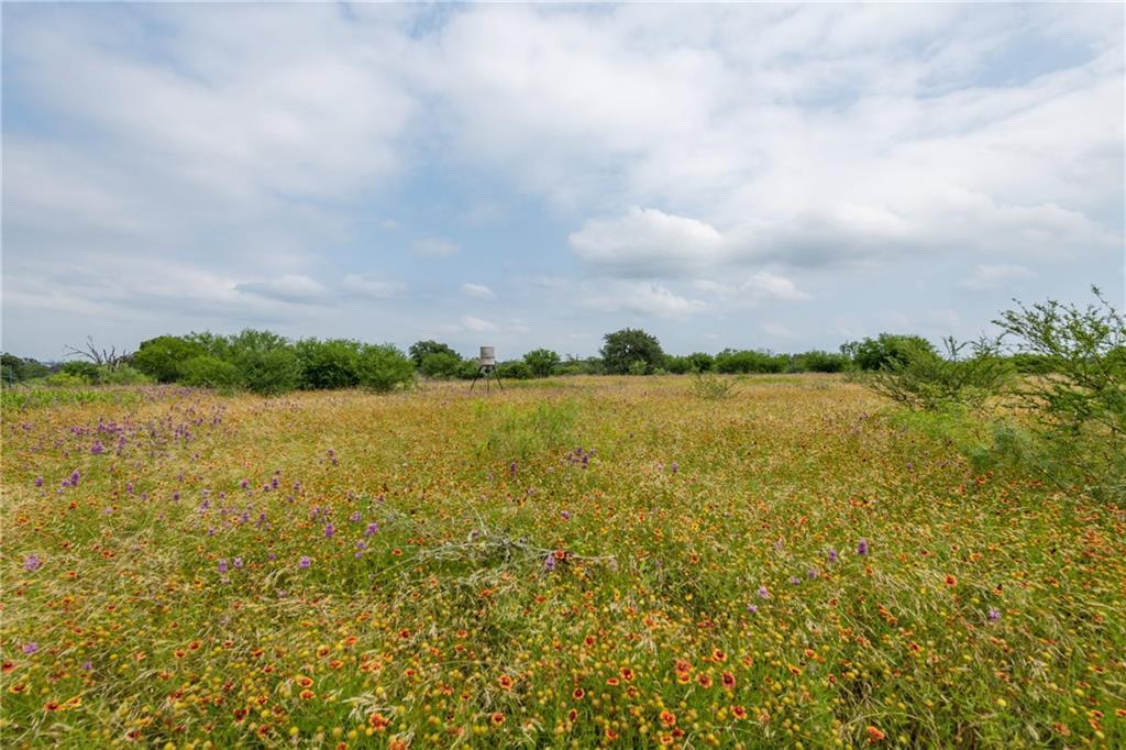 acreage, wildlife, spicewood, no hoa | 0 N Paleface Ranch Road Spicewood, TX 78669 7