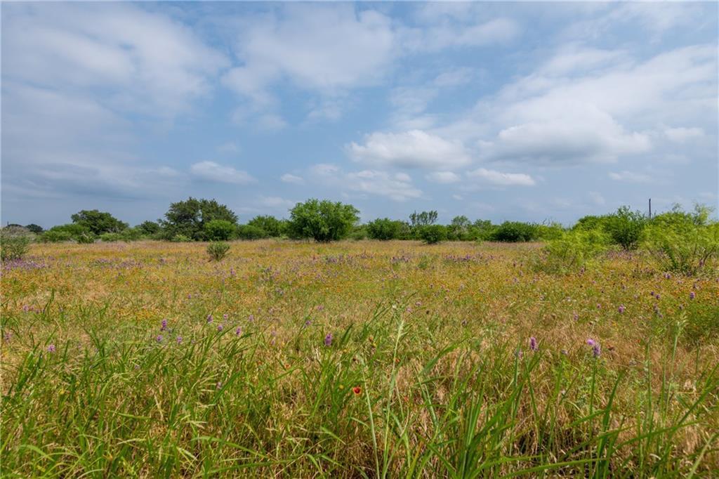 acreage, wildlife, spicewood, no hoa | 0 N Paleface Ranch Road Spicewood, TX 78669 8