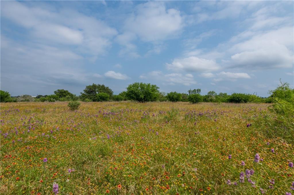 acreage, wildlife, spicewood, no hoa | 0 N Paleface Ranch Road Spicewood, TX 78669 9