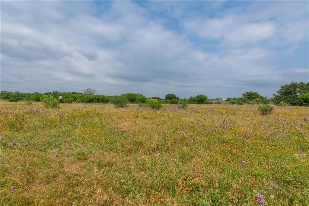 acreage, wildlife, spicewood, no hoa | 0 N Paleface Ranch Road Spicewood, TX 78669 10