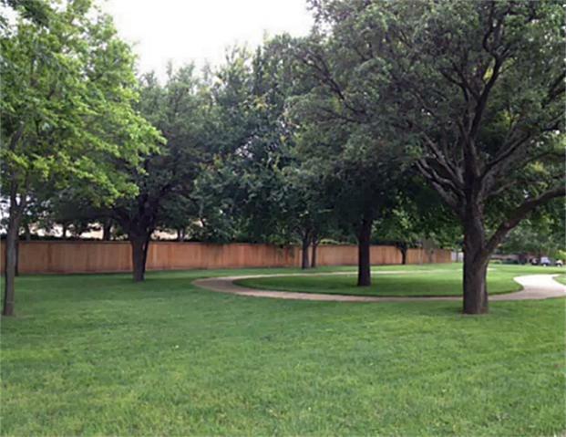 Sold Property | 3016 Crickett Drive Plano, Texas 75023 9