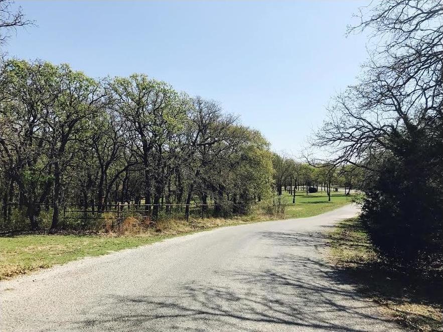 Sold Property | Lot 19 Joy Trail Paradise, Texas 76073 0