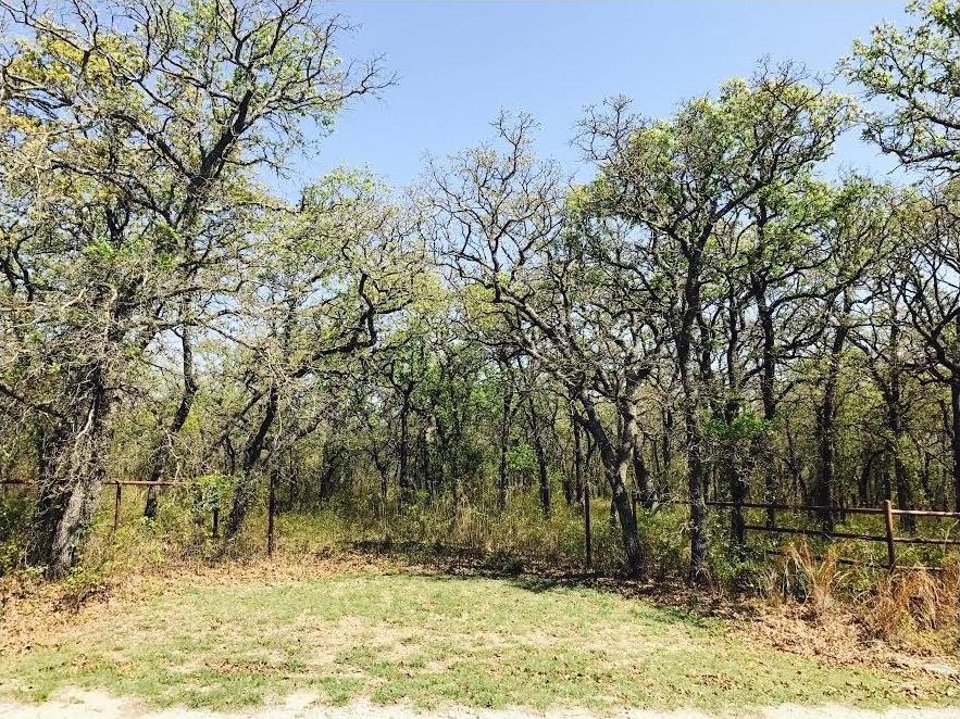 Sold Property | Lot 19 Joy Trail Paradise, Texas 76073 1