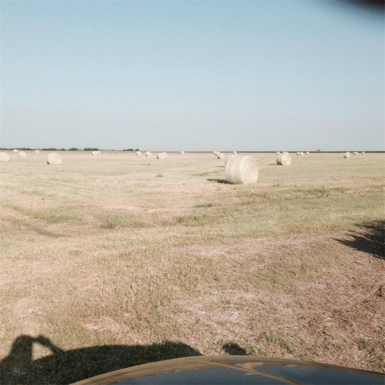 Sold Property | 0000 Harris Street Italy, Texas 76651 12