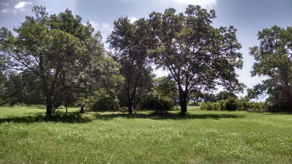 Sold Property | 0000 Harris Street Italy, Texas 76651 2