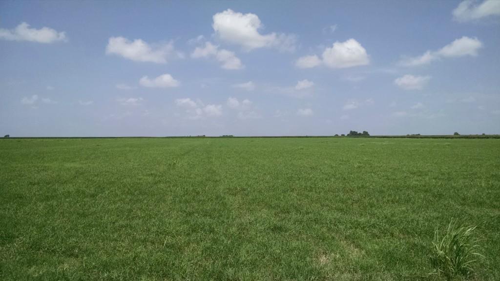 Sold Property | 0000 Harris Street Italy, Texas 76651 9