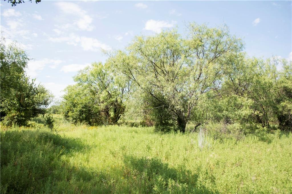 Sold Property | G3R Canyon Lake  Gordon, TX 76453 1