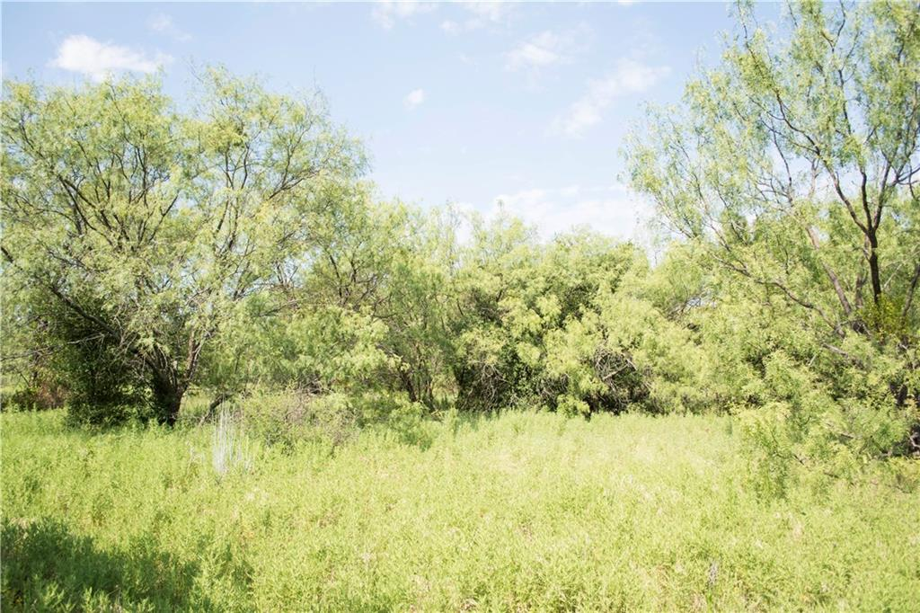 Sold Property | G3R Canyon Lake  Gordon, TX 76453 2