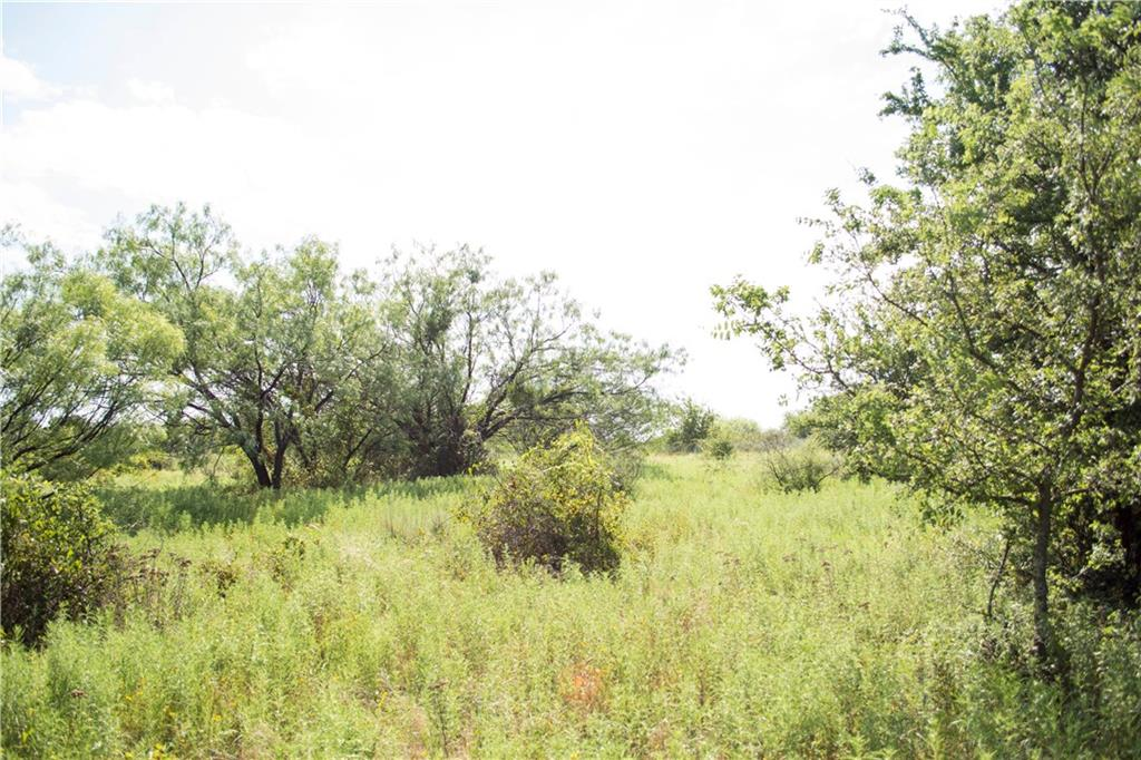 Sold Property | G3R Canyon Lake  Gordon, TX 76453 5