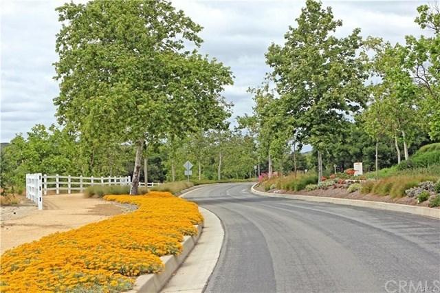 Active | 9 Douglass Drive Coto de Caza, CA 92679 31