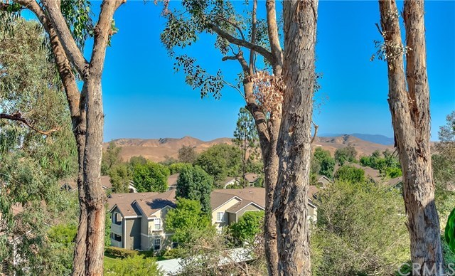 Closed | 15685 Ladera Vista Drive Chino Hills, CA 91709 58