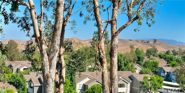 Closed | 15685 Ladera Vista Drive Chino Hills, CA 91709 6