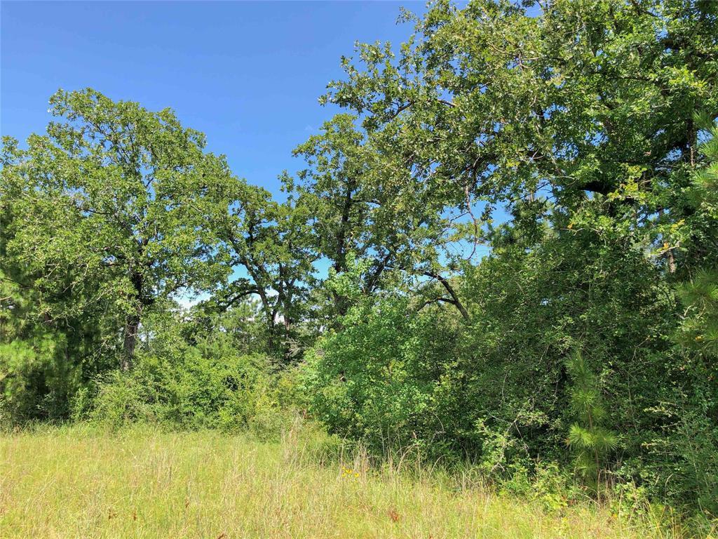 Off Market   000 Hopewell Road Huntsville, Texas 77320 10