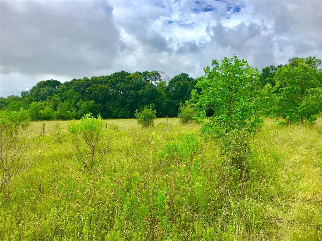 Active | 0 COUNTY ROAD 57  Iowa Colony, TX 77583 3
