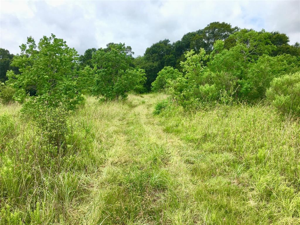 Active | 0 COUNTY ROAD 57  Iowa Colony, TX 77583 4