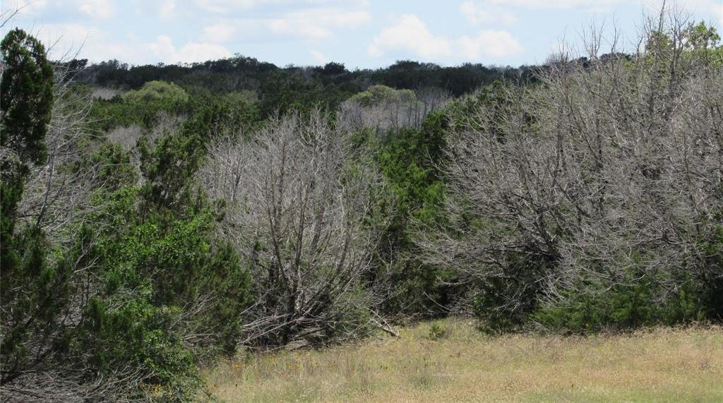 Country property in Rocksprings | 0 Pvt Road 4270 Rocksprings, TX 78880 19