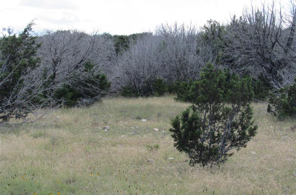 Country property in Rocksprings | 0 Pvt Road 4270 Rocksprings, TX 78880 22