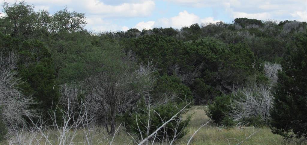 Country property in Rocksprings | 0 Pvt Road 4270 Rocksprings, TX 78880 23