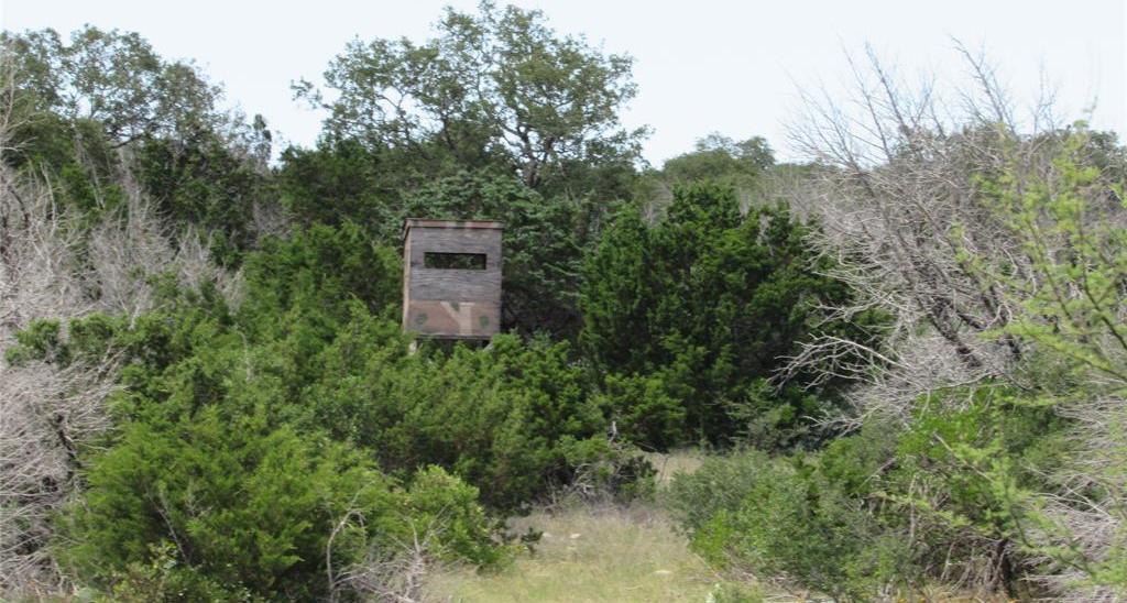 Country property in Rocksprings | 0 Pvt Road 4270 Rocksprings, TX 78880 24