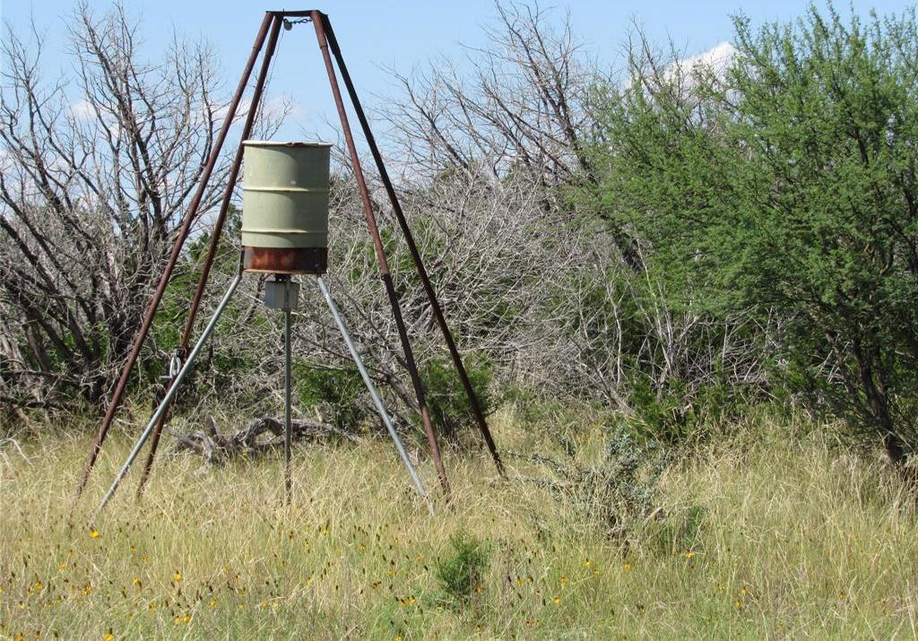 Country property in Rocksprings | 0 Pvt Road 4270 Rocksprings, TX 78880 35