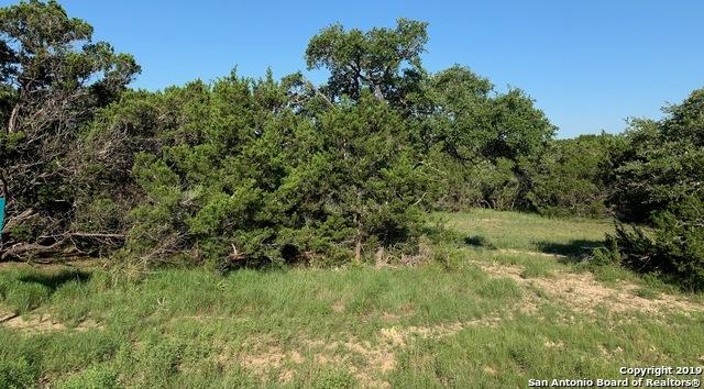 Active   973 Malbec Loop  Canyon Lake, TX 78133 0