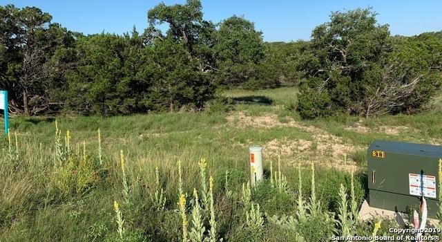 Active   973 Malbec Loop  Canyon Lake, TX 78133 1