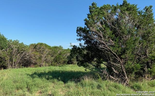Active   973 Malbec Loop  Canyon Lake, TX 78133 8