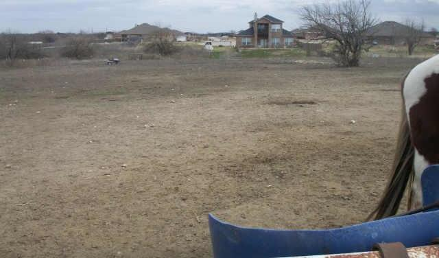 Sold Property | 11021 Adiana  Crowley, Texas 76036 14
