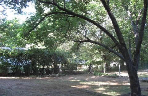 Sold Property | 2869 Hunter Street Fort Worth, Texas 76112 17